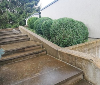 Lim'Jardin - Aménagements extérieurs
